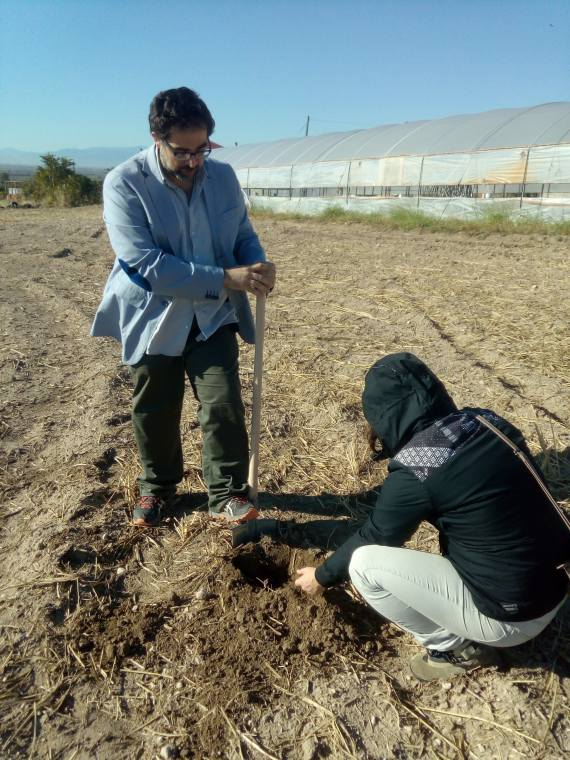 Spade test application in northern Greece