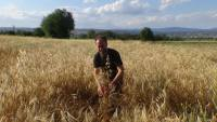 COLLECTING, RECORDING AND EVALUATION OF BIODIVERSITY   WITHIN AEGILOPS